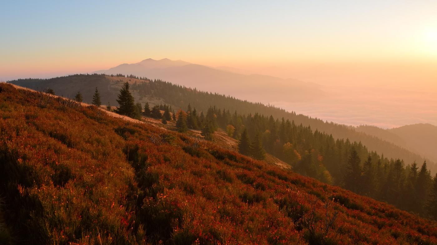 ...  jesenné ráno ...