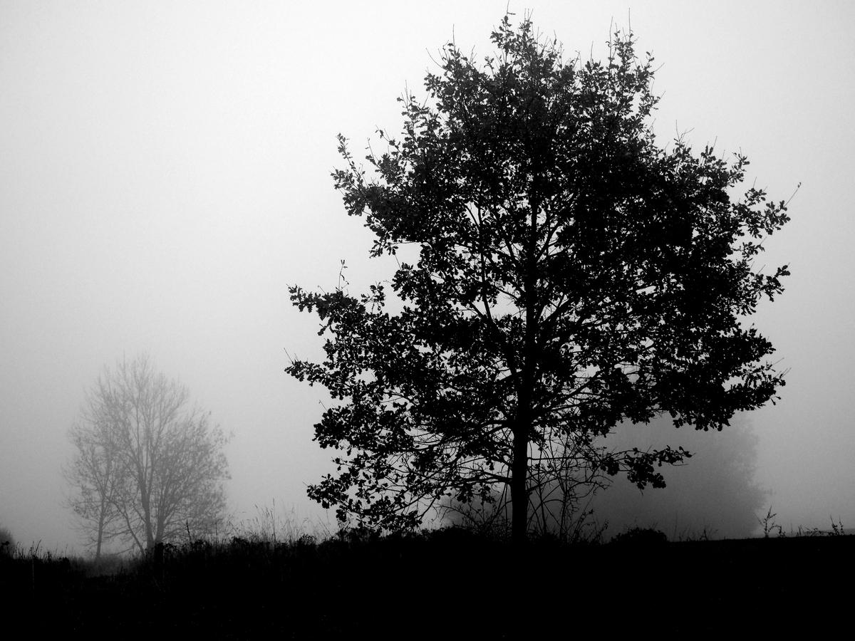 Dnešní mlhavo
