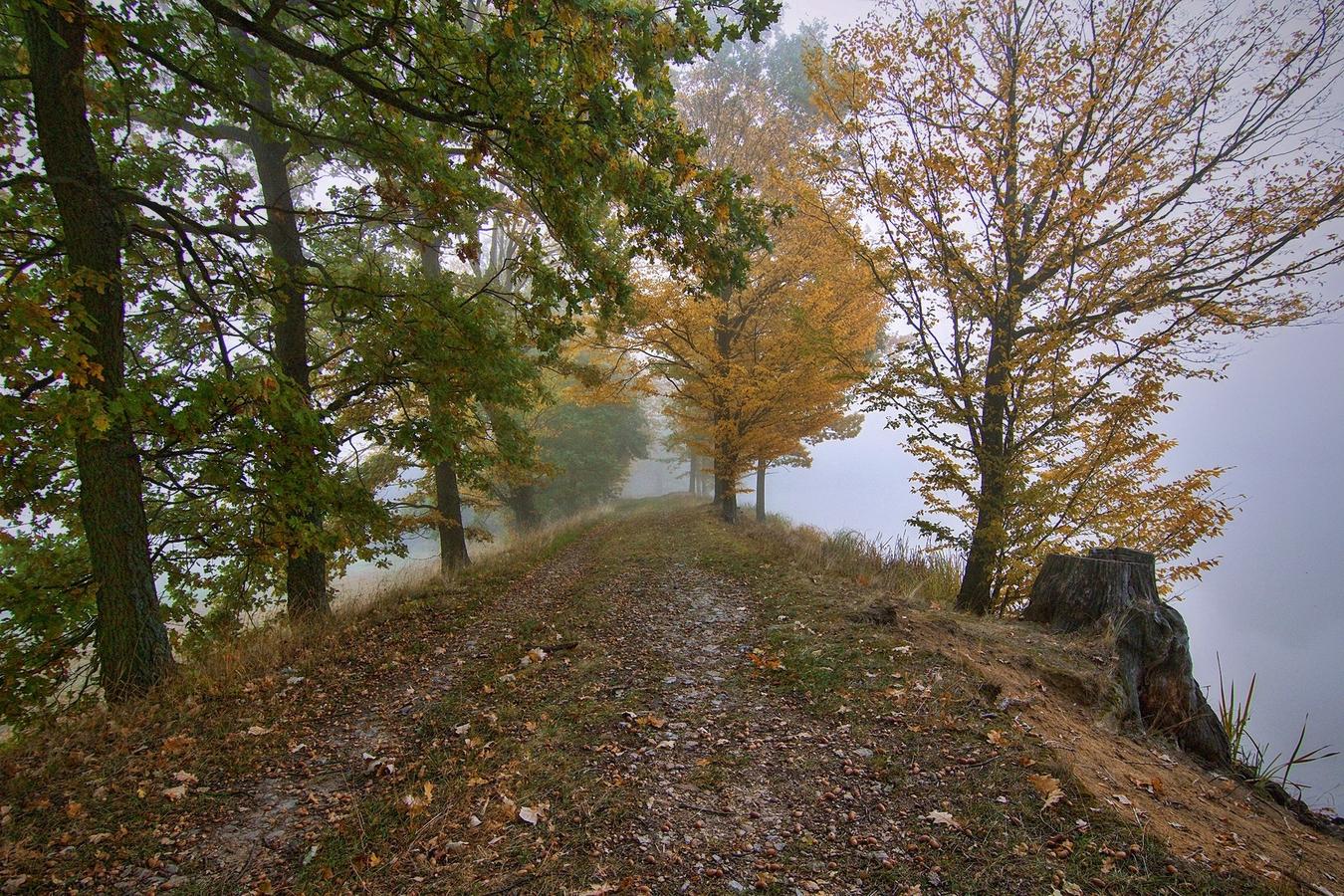 Barevný podzim
