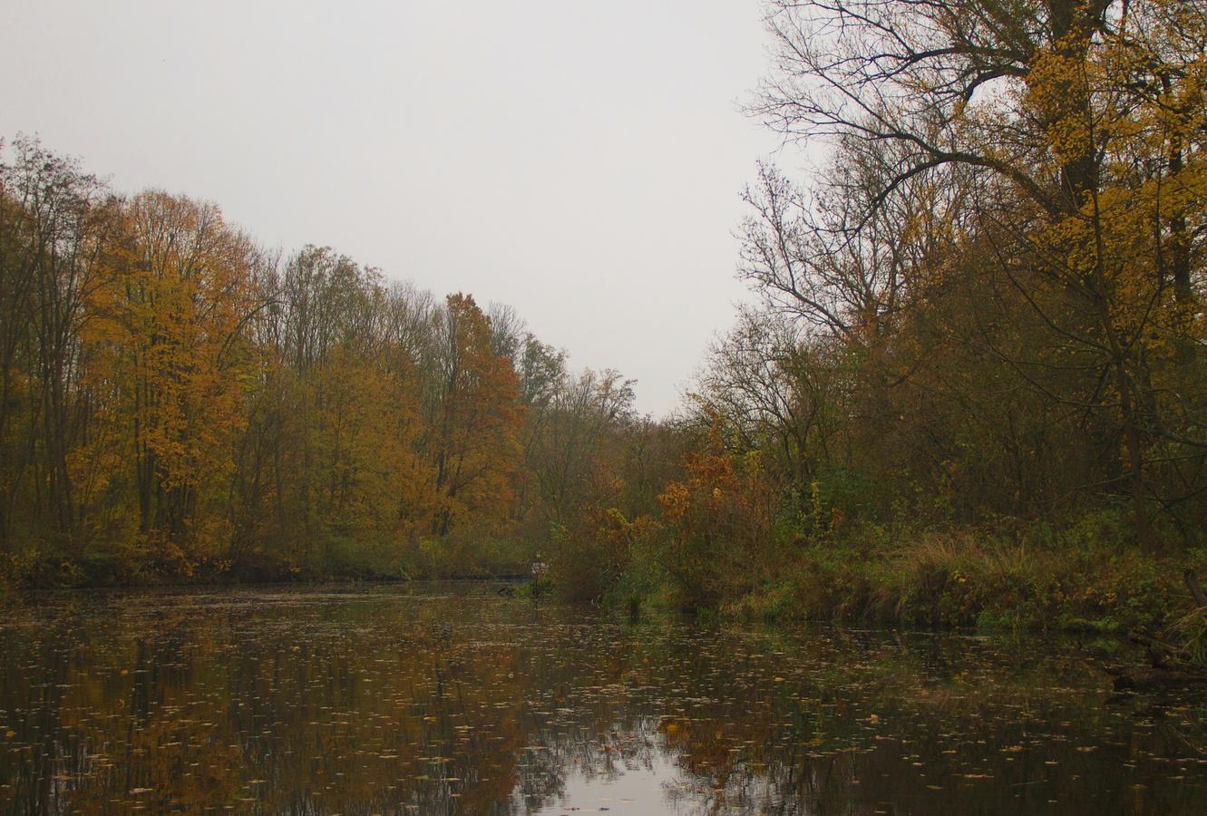 Podzim u Dyje