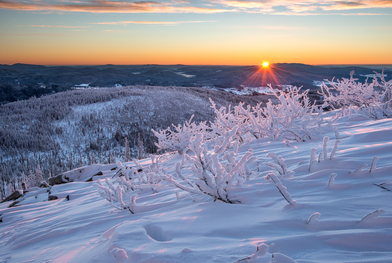 Šumava zimní (Luzný)