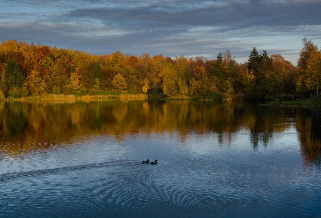 podvečer na Stříbrném jezeře ...
