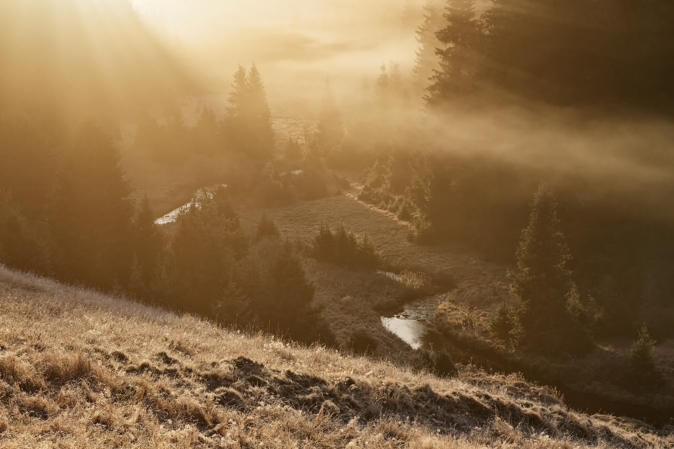 Šumava - údolí Křemelné