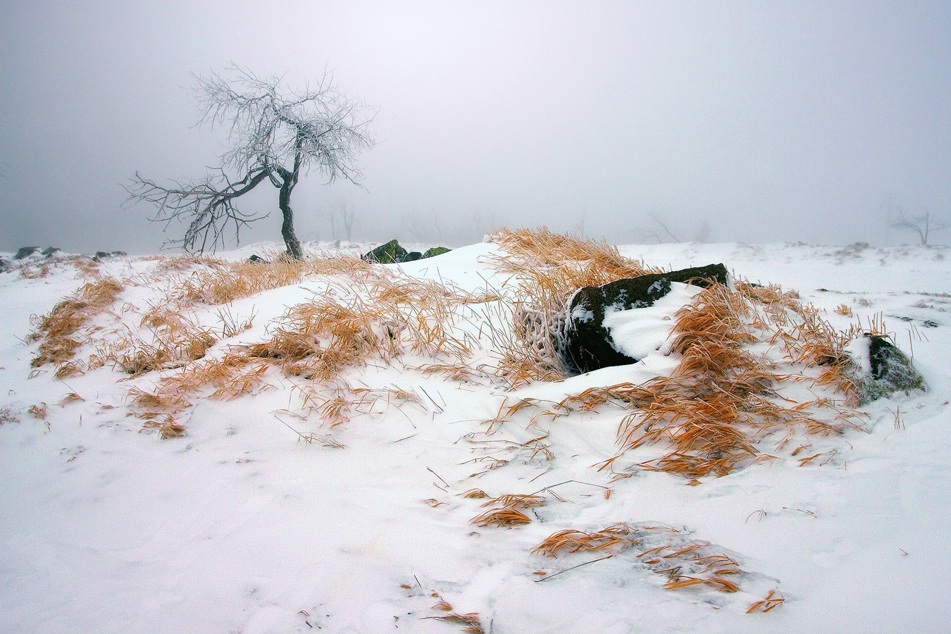 ...zima v horách Krušných