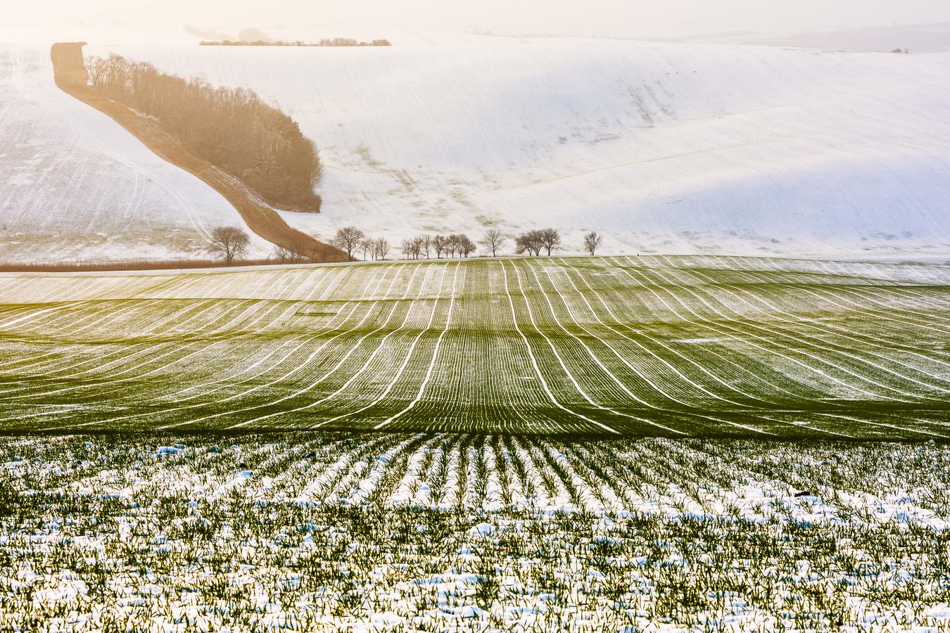 Zima u Svatobořic