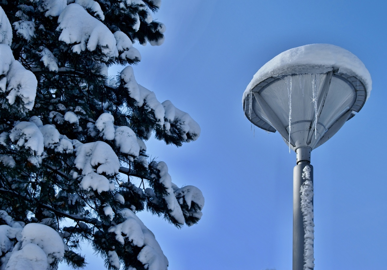 lampa v parku