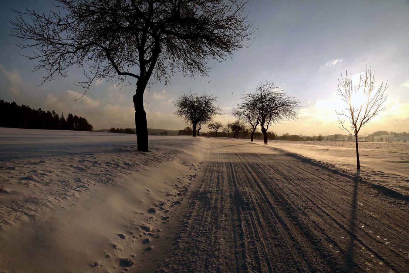 Tvorba sněhových jazyků