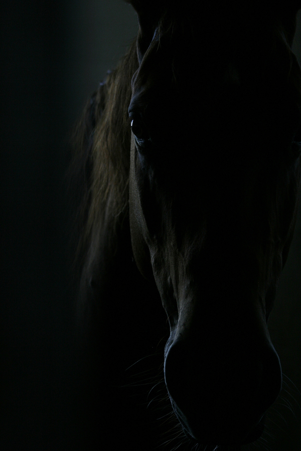 ve tmě se zjevil...
