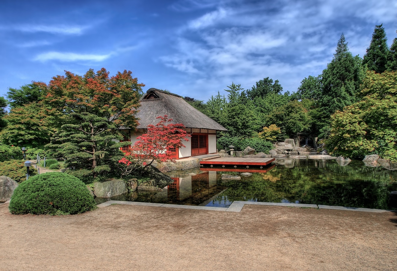 V japonské zahradě.