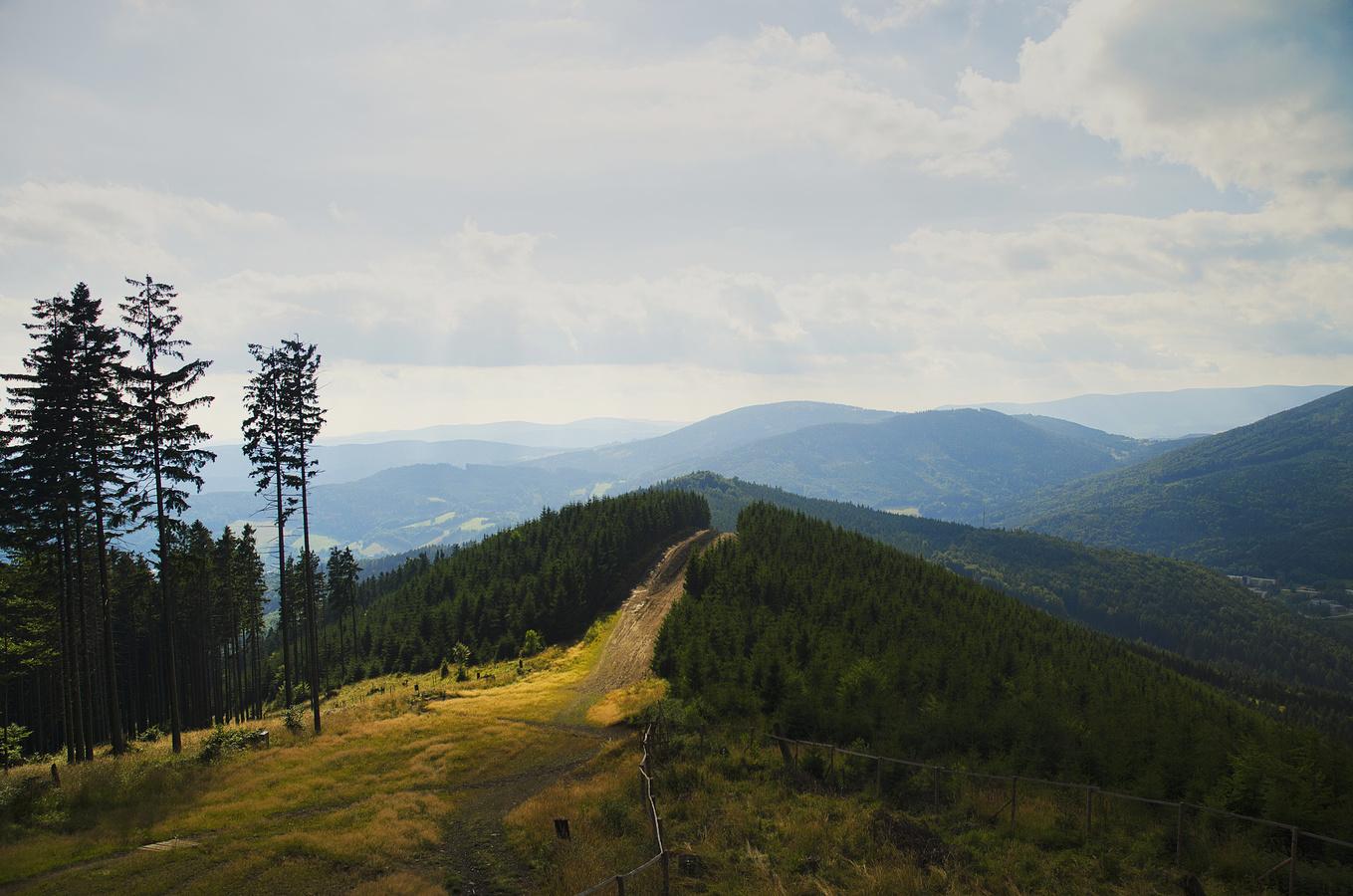 Jesenické kopce