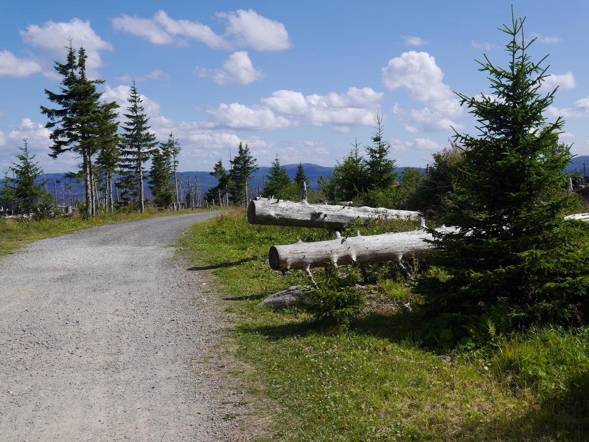 Šumavské procházky
