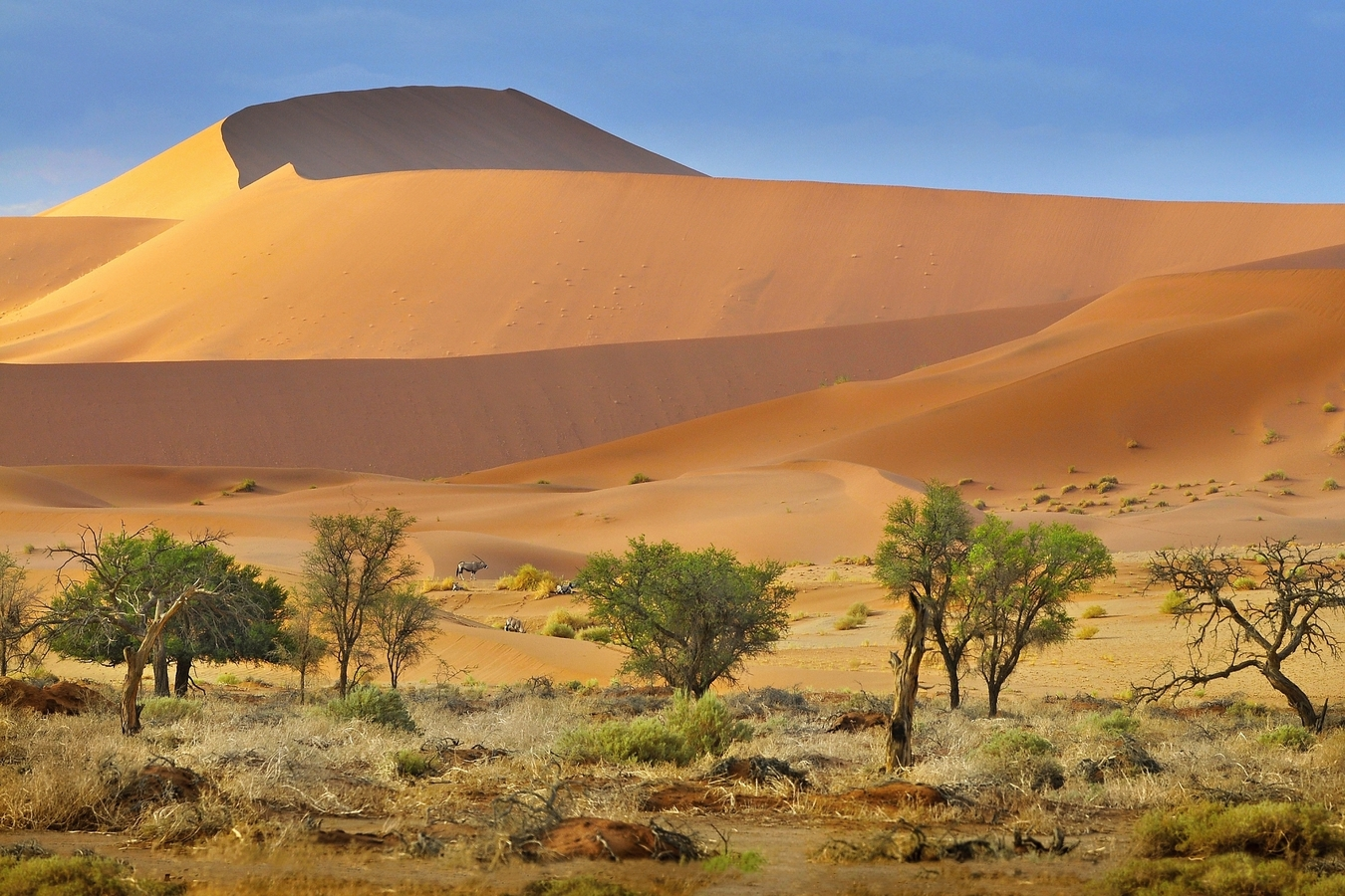 vzpomínky na Afriku (18)