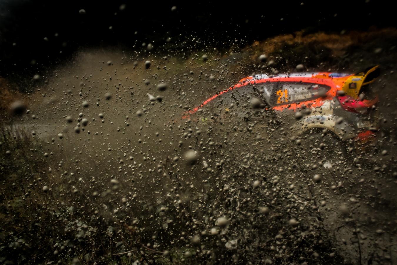 Prokop v blate