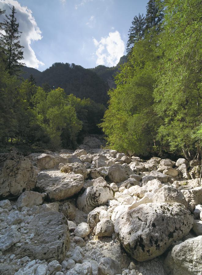 Vyschlá řeka