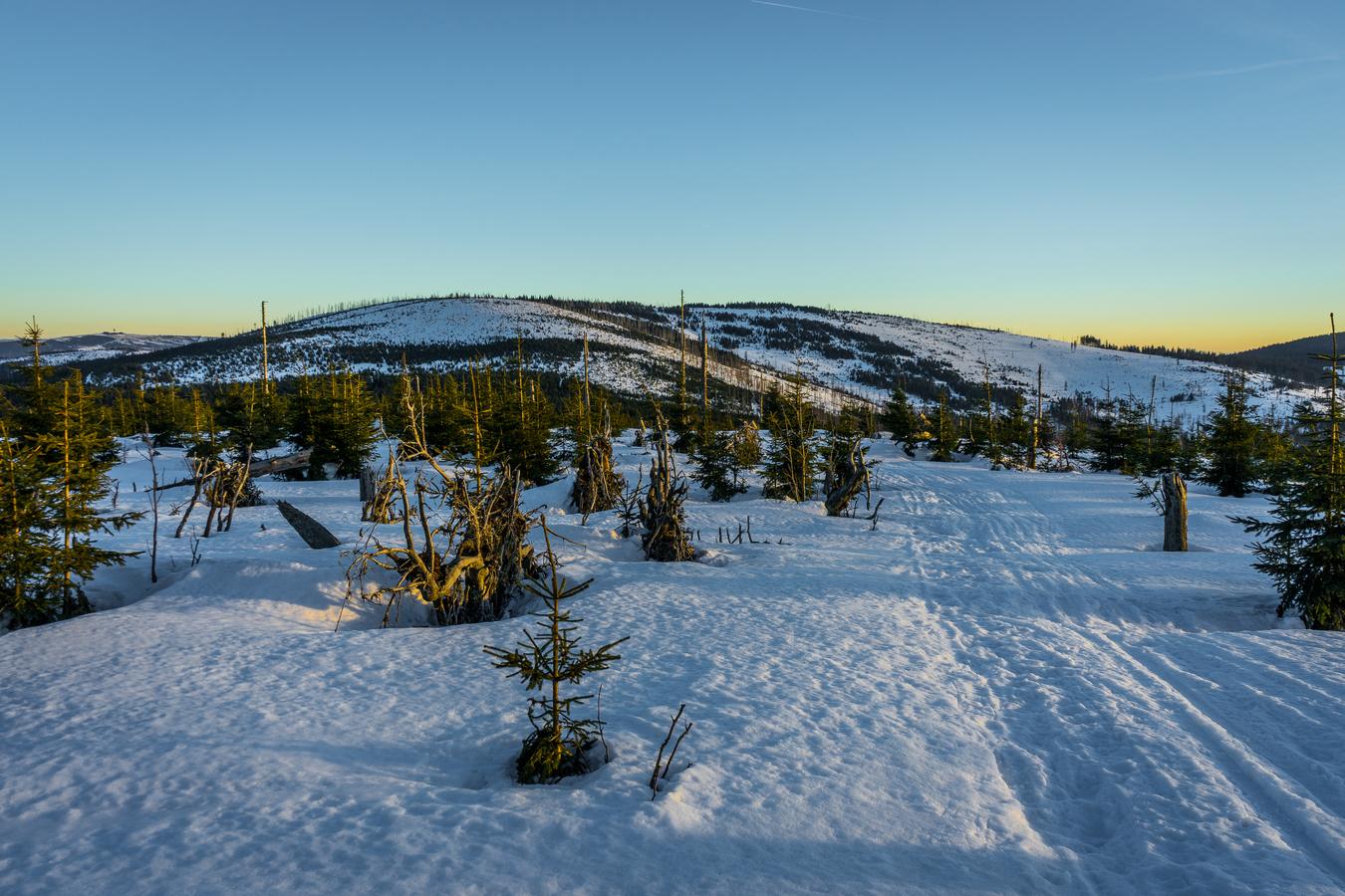 Zimní Šumava