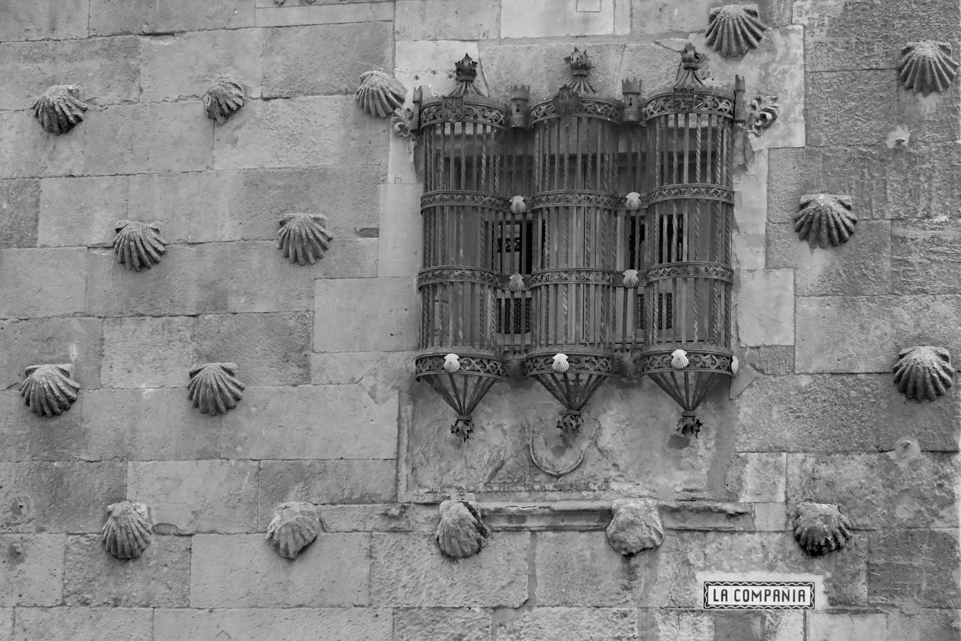 Katedrála ve španělské Salamance