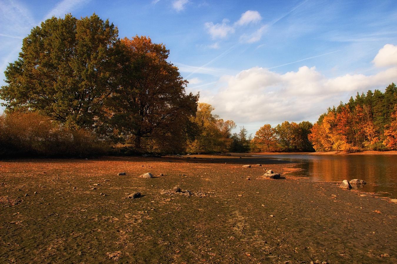 Podzim na rybníce