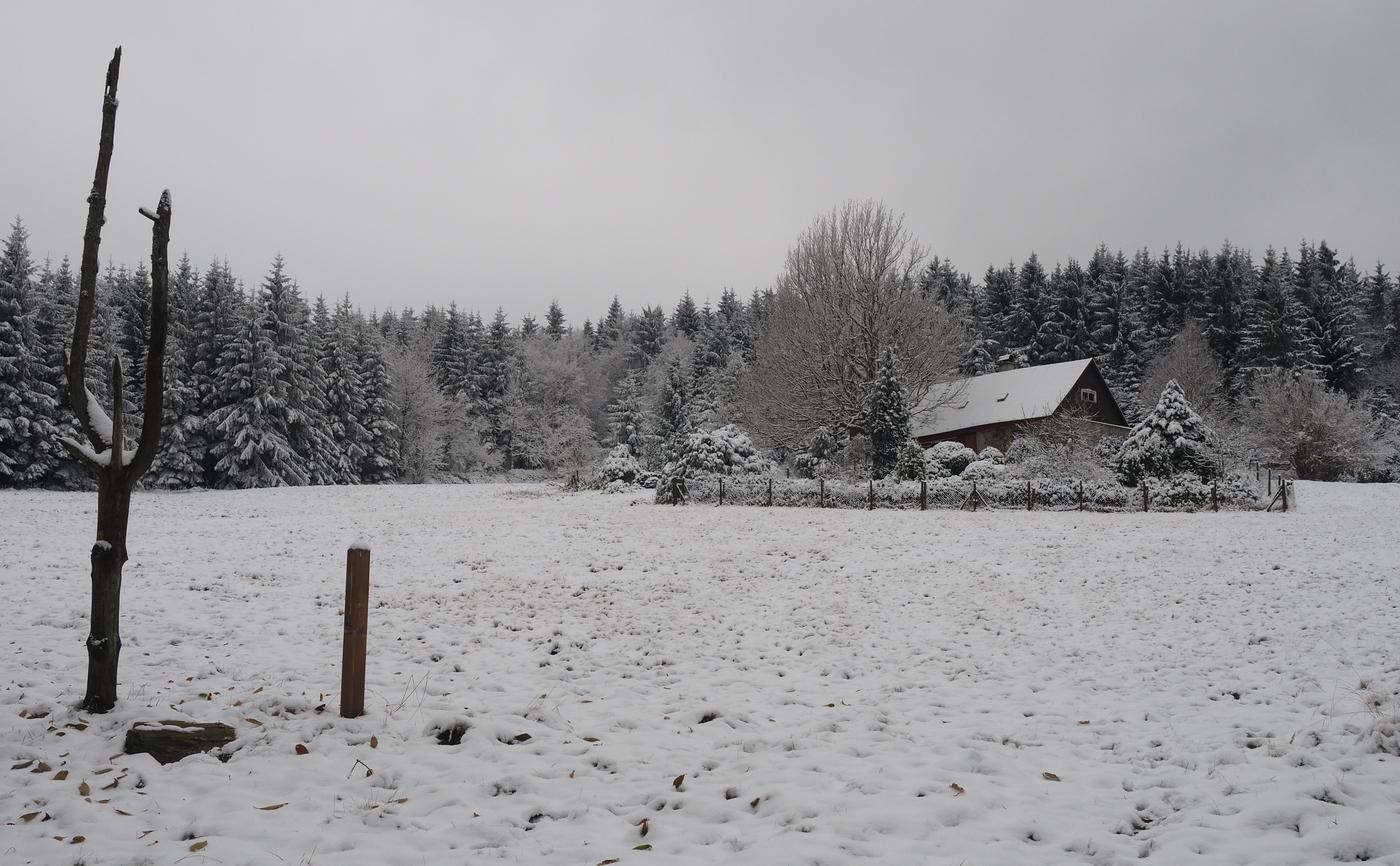 Na samotě u lesa a pod sněhovou peřinou.