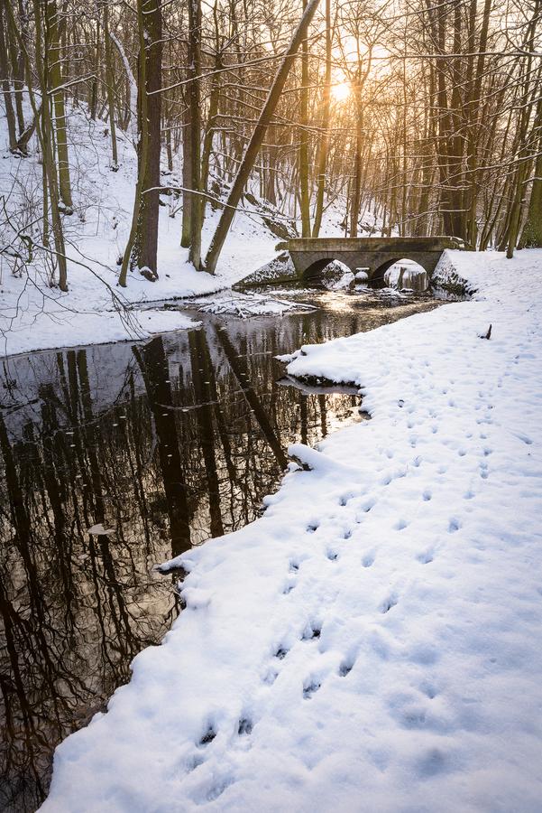 Zima v Dobříšském parku