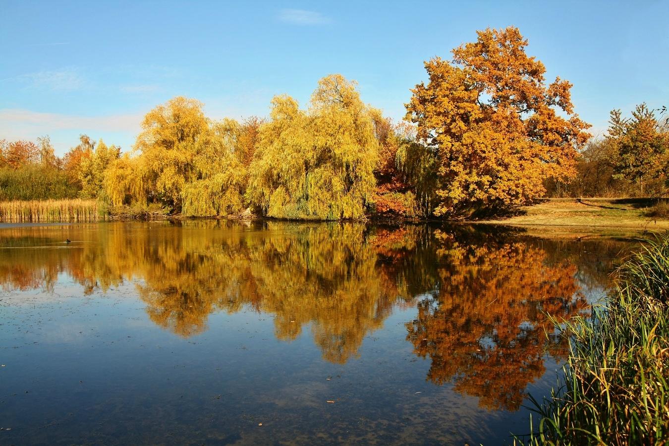 U rybníka 3
