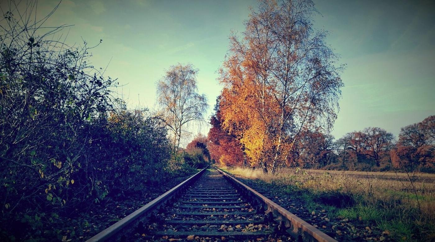 Jízda podzimem