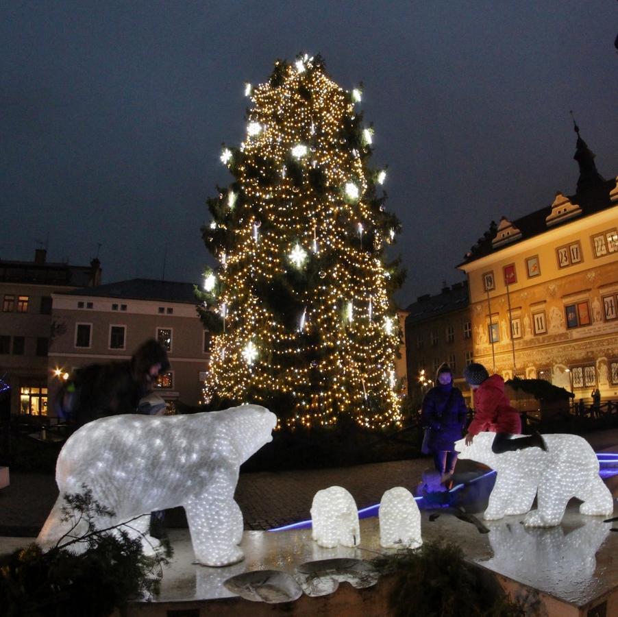 Děti, medvědi a Vánoce