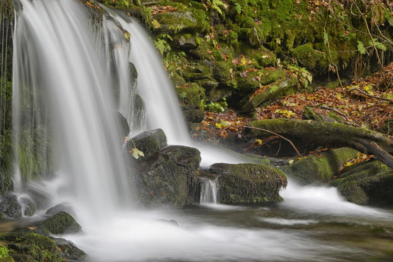 Jeseníky- Skalní potok