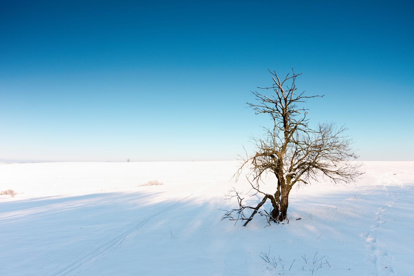 Zimní Krušné hory