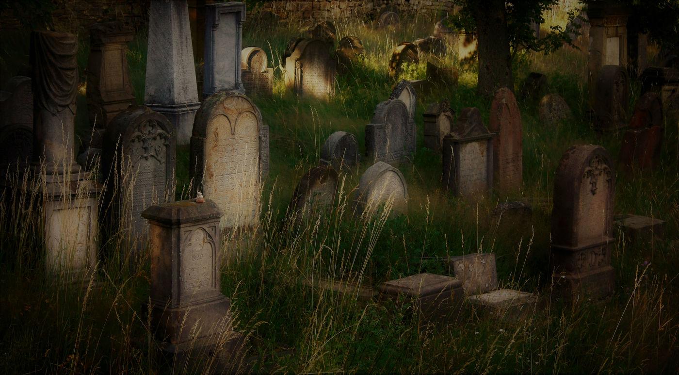 Místo,kam chodí duše spát...i stéblo trávy touží tiché blues hrát...