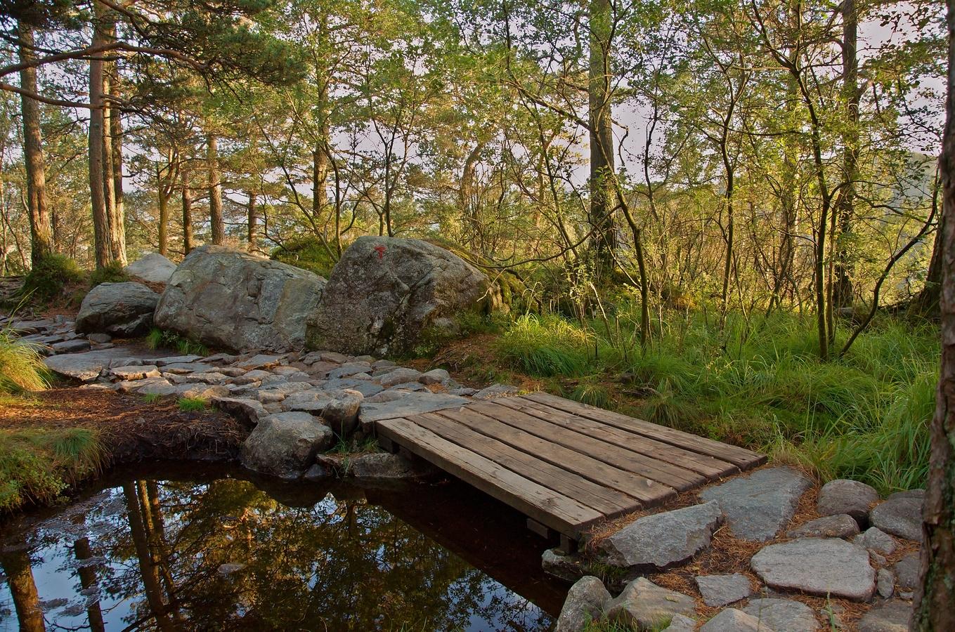 Dřevěný mostek