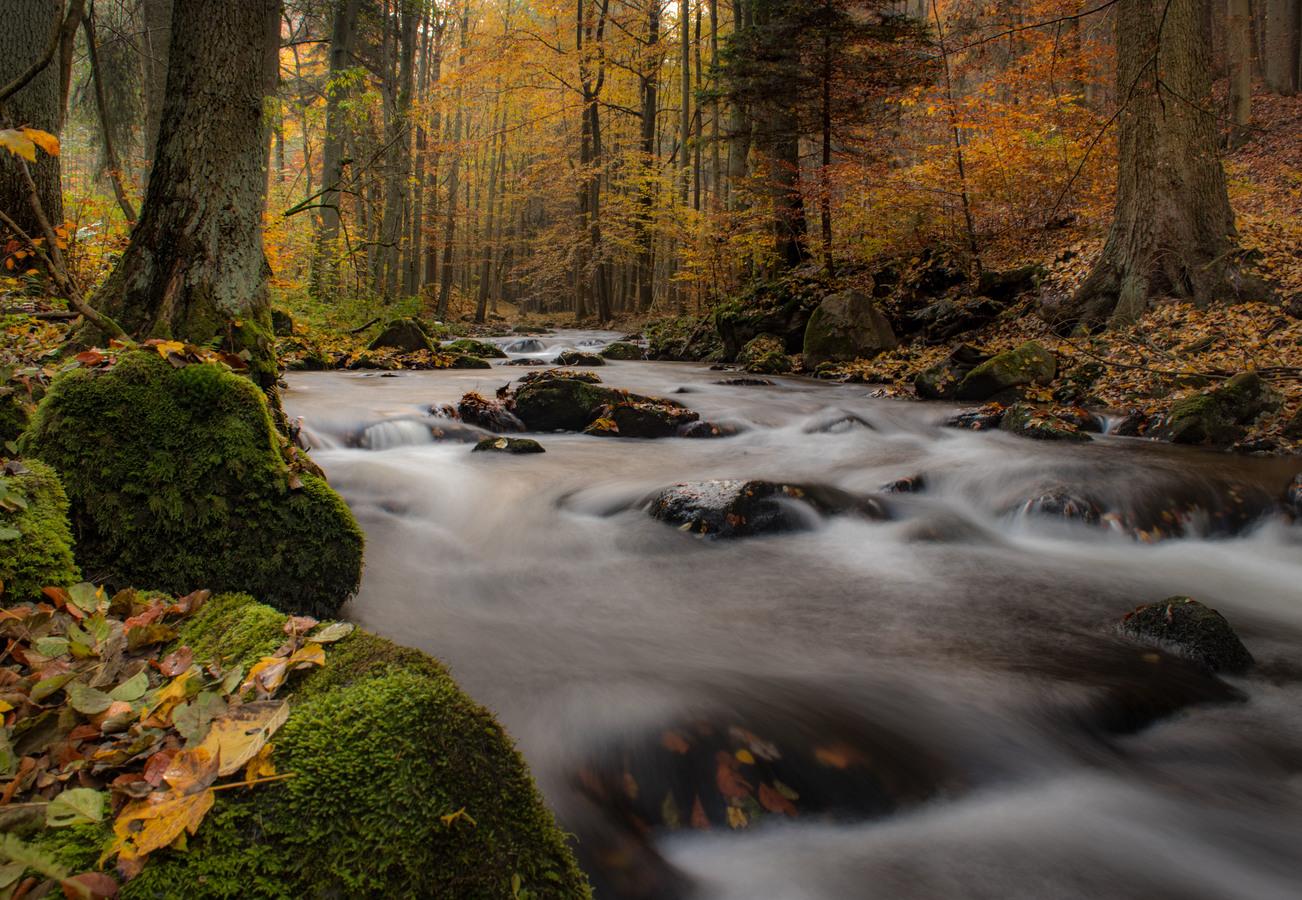 Barevný potok