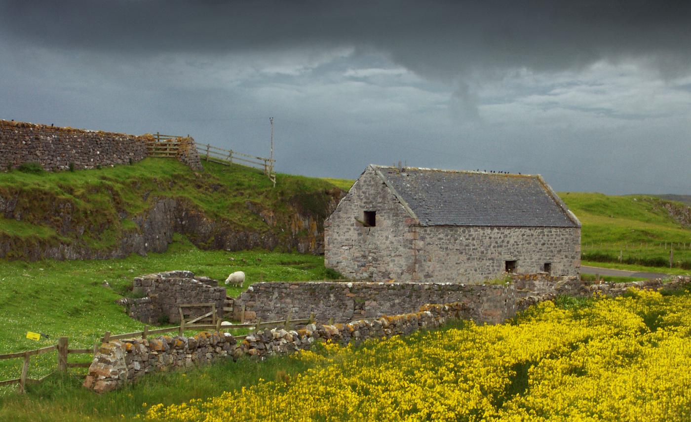 Zemědělská usedlost  na severu Skotska