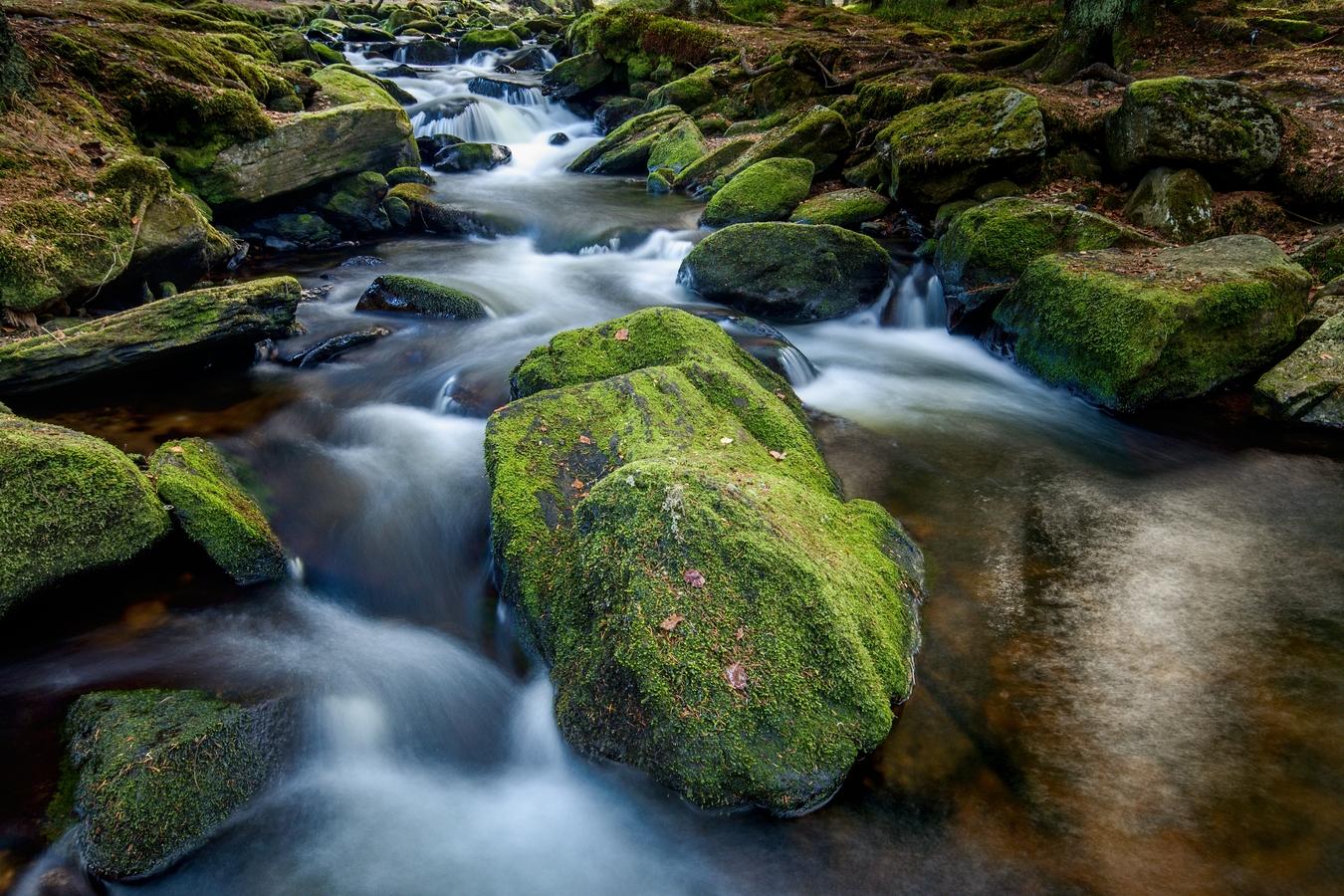Listopadový Hamerský potok