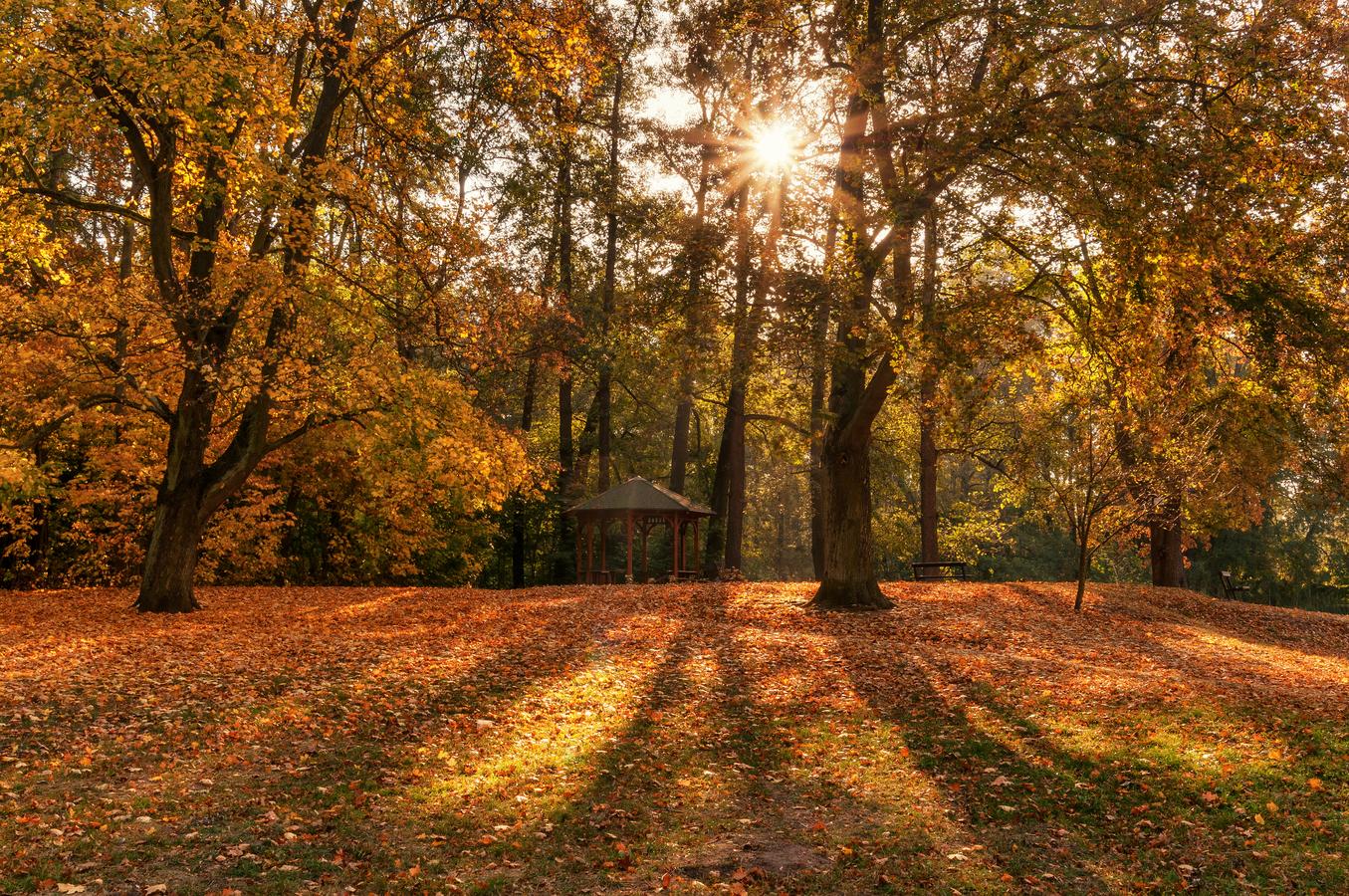 Podzim v Polabí