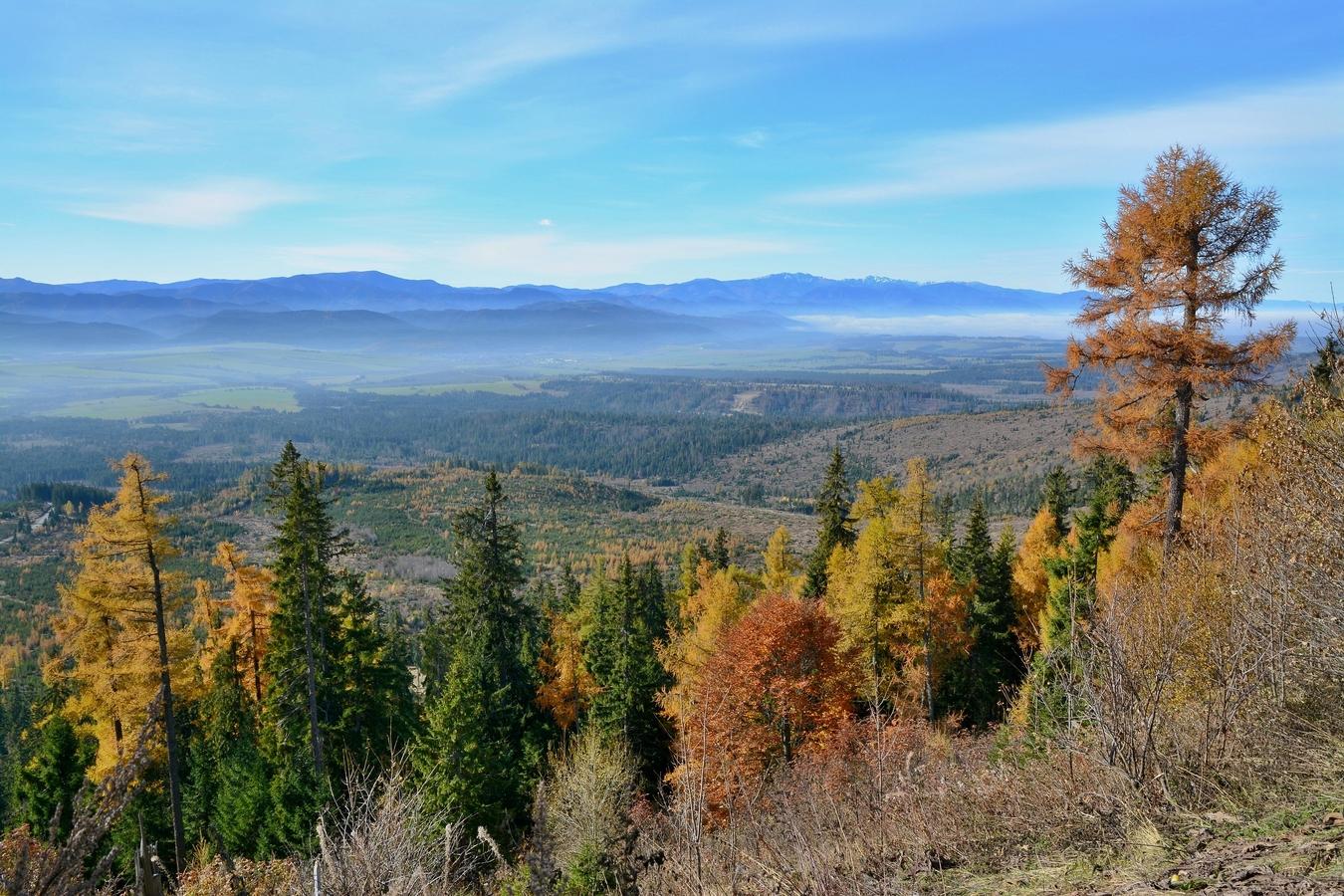 Podzimní pohledy