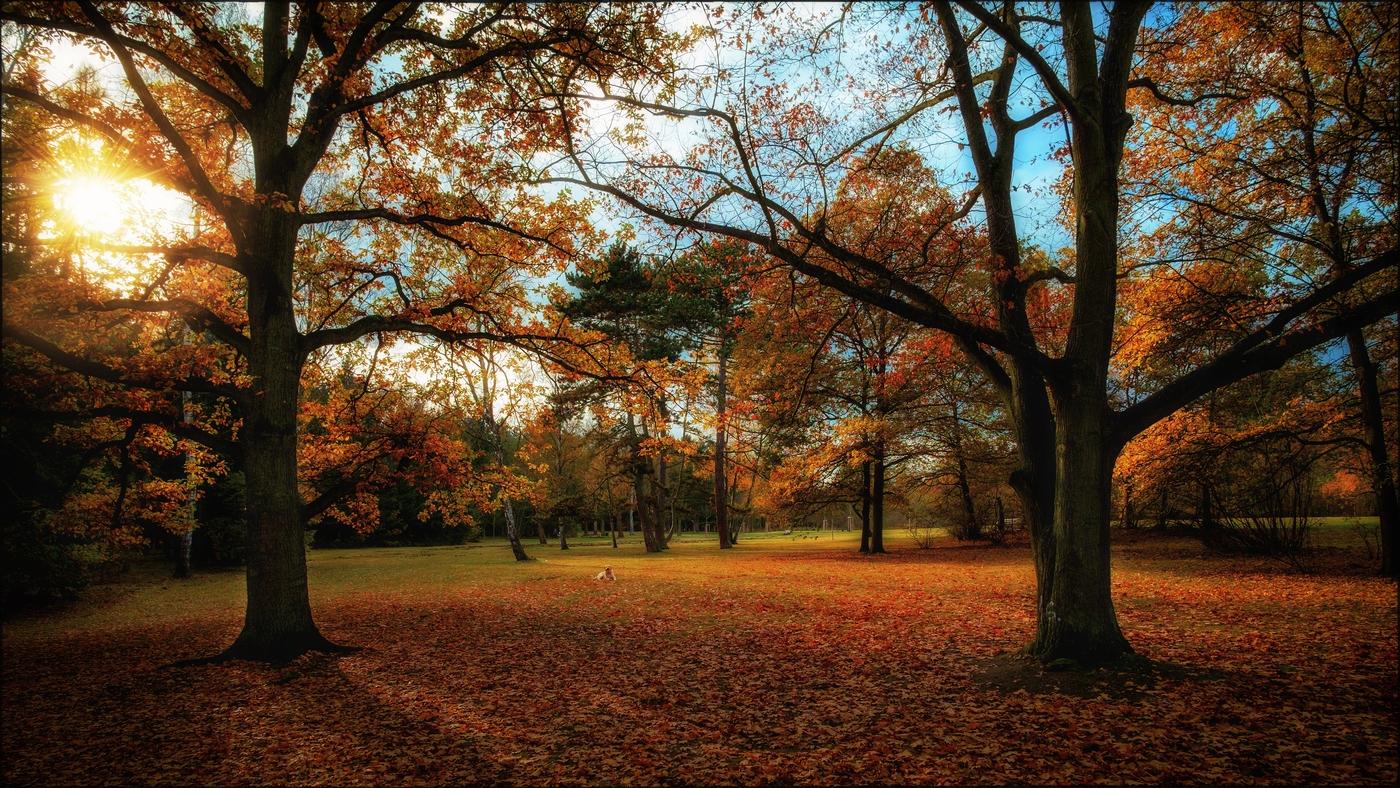 Velvia podzim