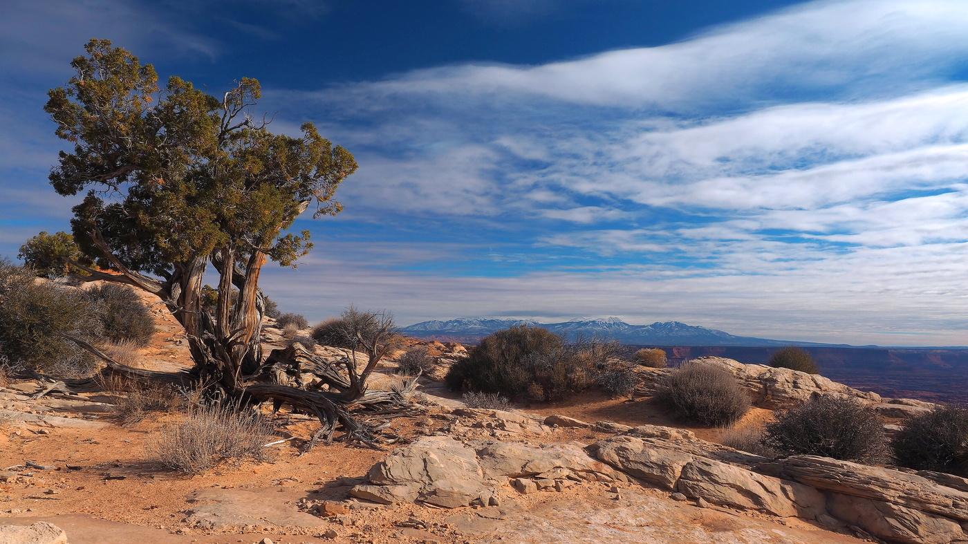 canyonlands VI