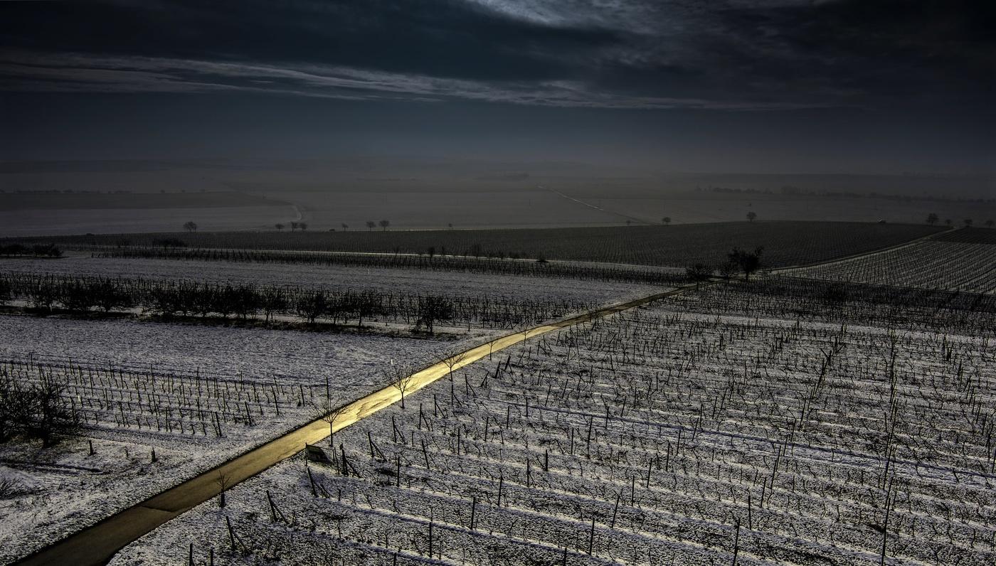 Spící vinohrad
