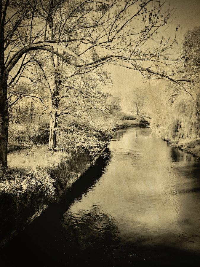 Ráno ne řece Bělá