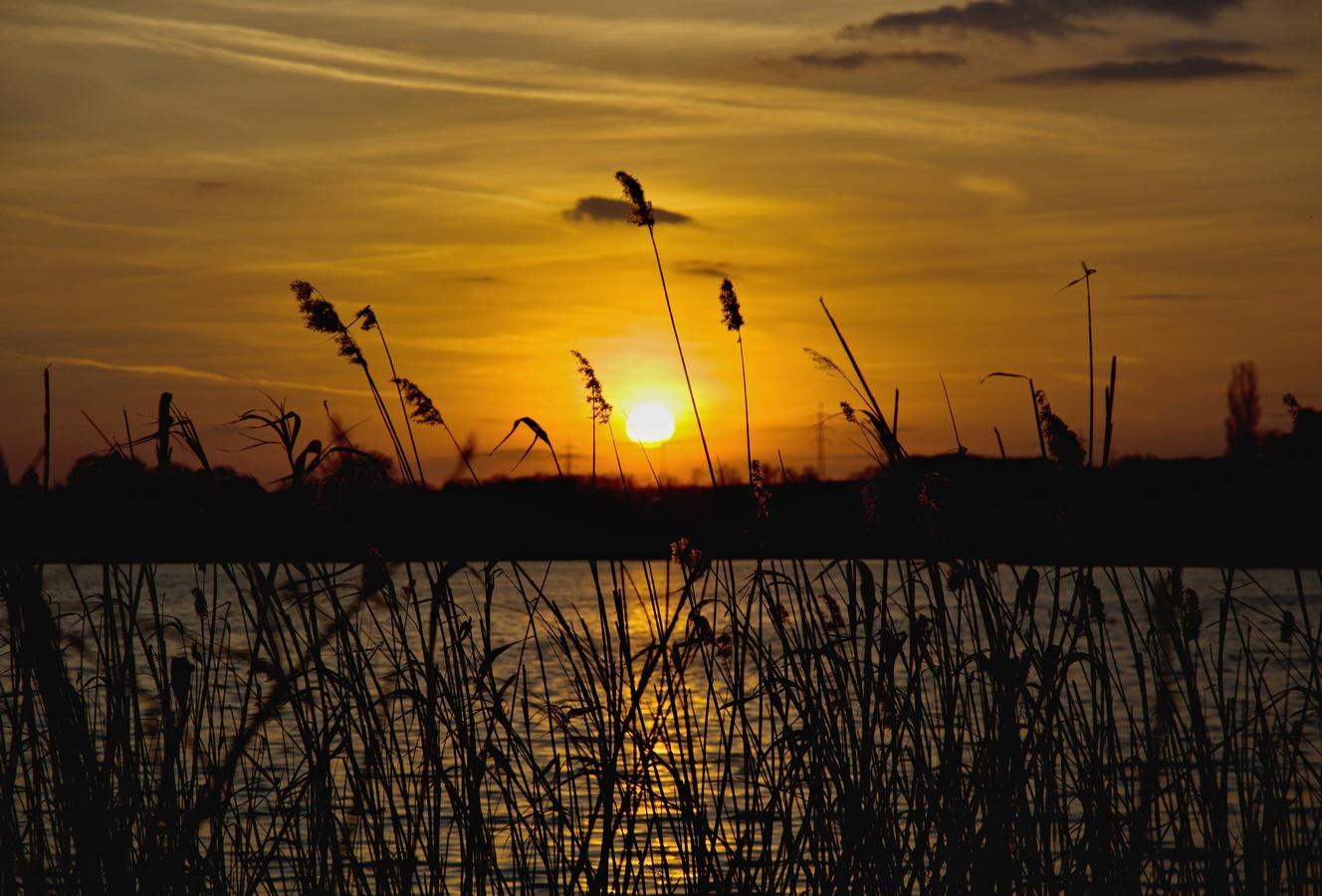 západ slunce u Mlýnského rybníku