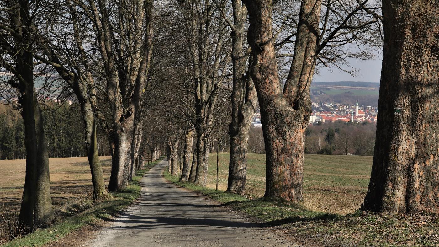 Cesta od Vavřinečku
