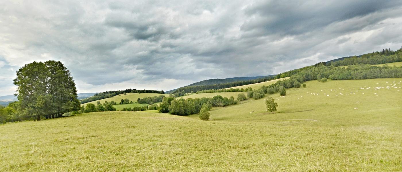 Pohled do krajiny Jesenicka