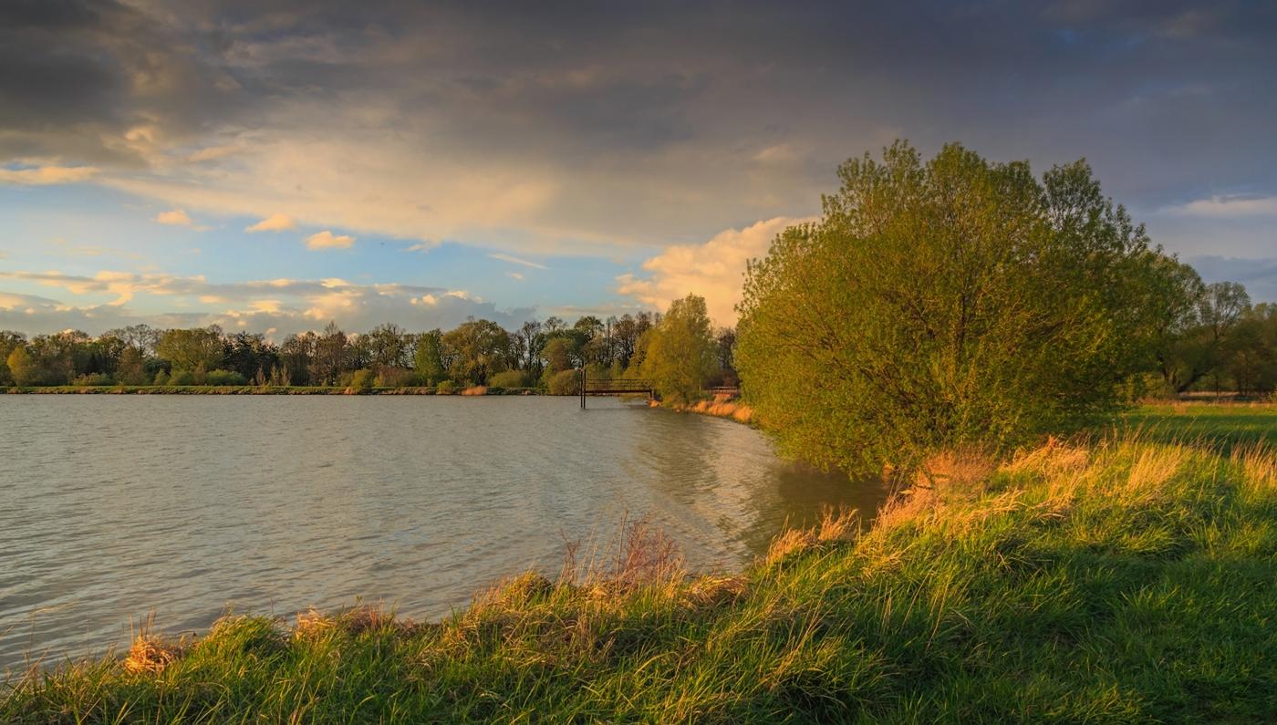 Po břehu rybníka