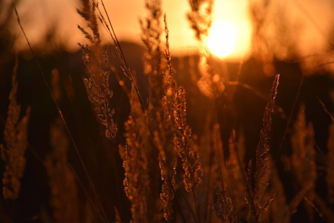 Další západ slunce :)