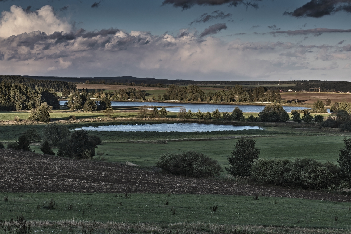 Pavlovské rybníky
