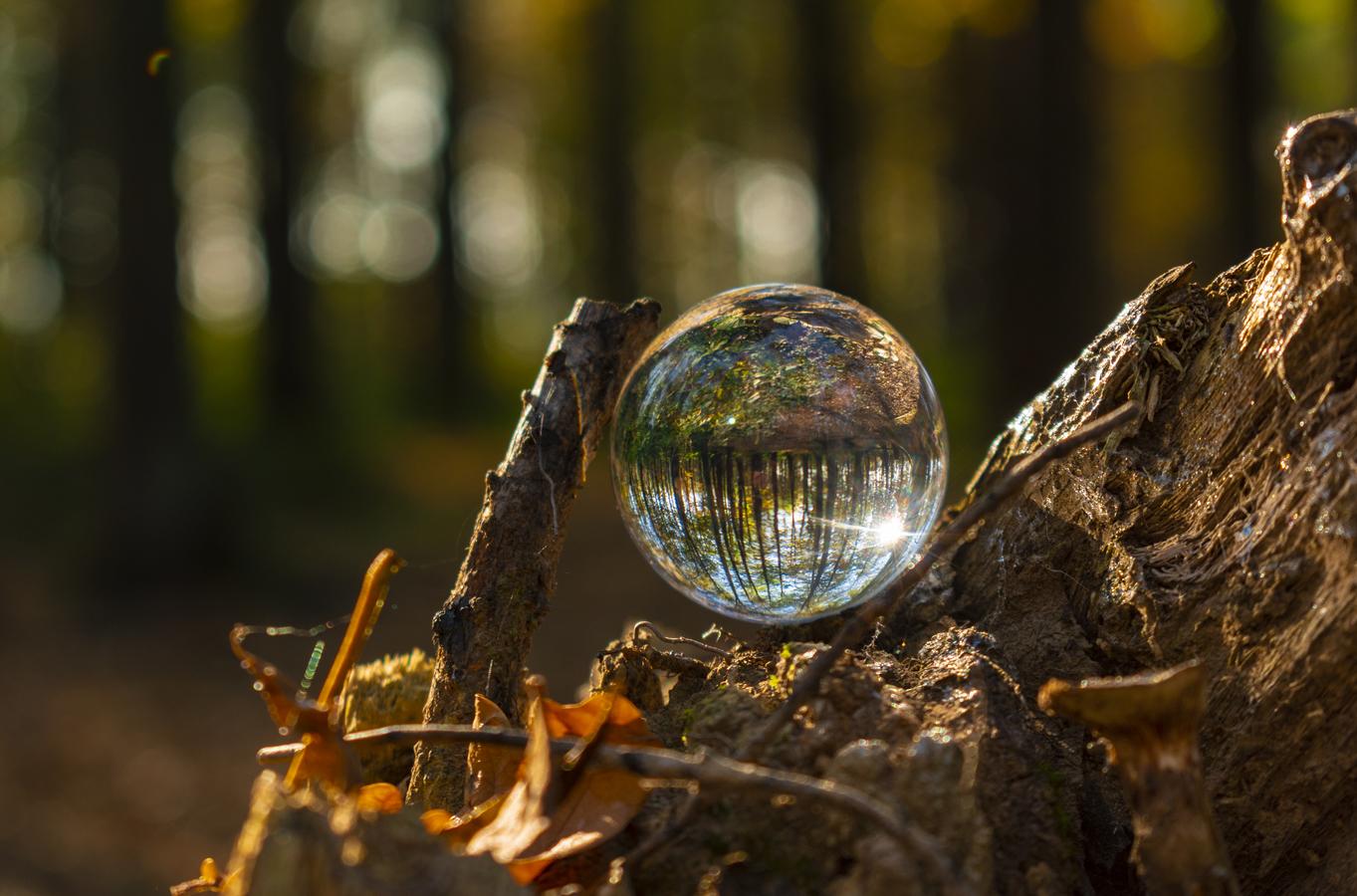 koule v přírodě