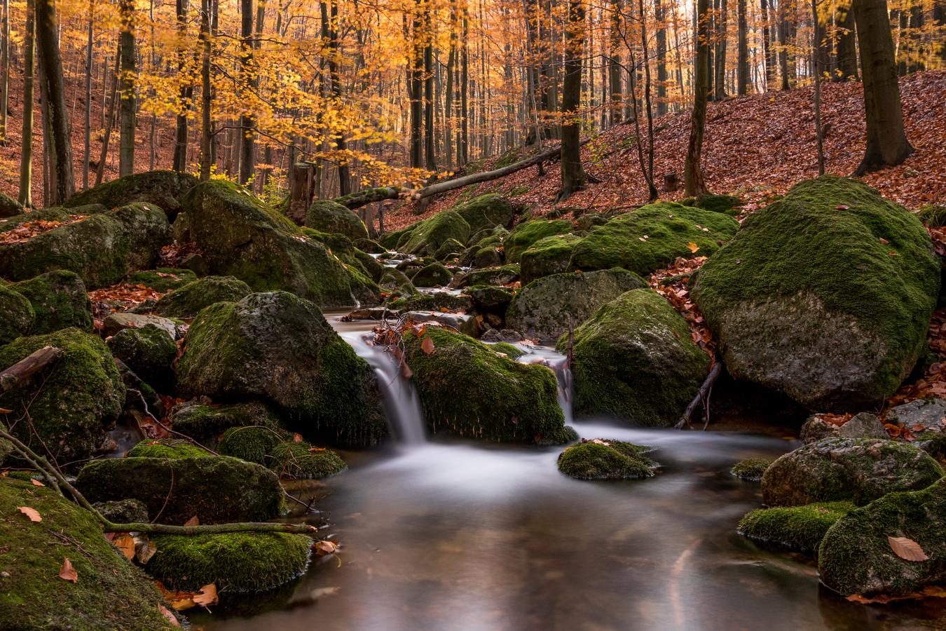 Podzim v plné kráse