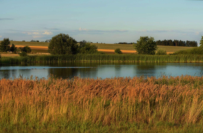 rybník Puštěnec