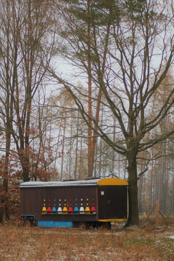 Barvy úlu při zimním dni