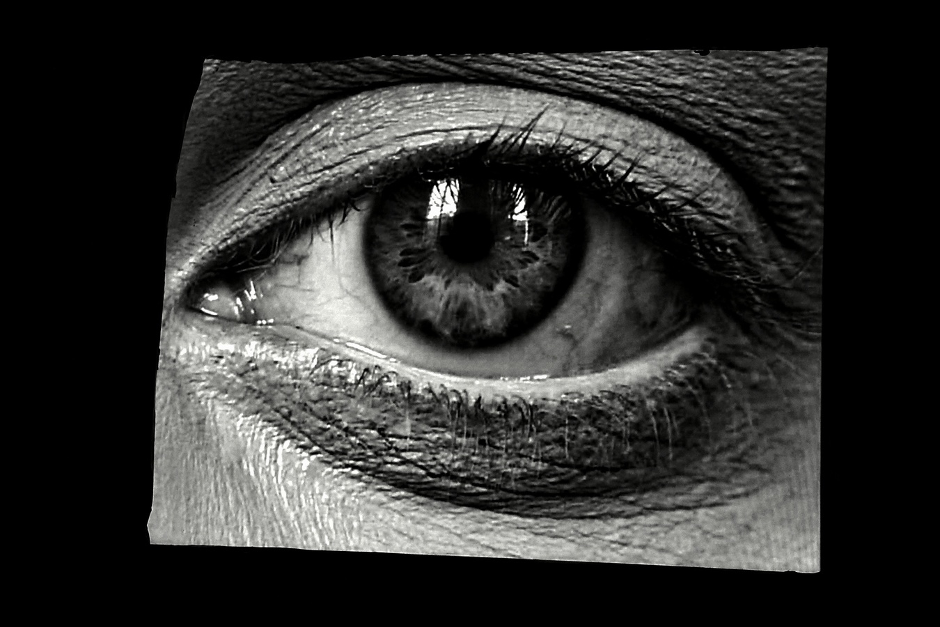 Oko bdící